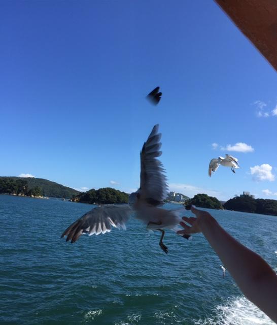 鳥羽イルカ島