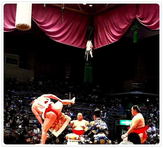 勢翔太の画像 p1_37